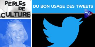 Perles de Culture n°264 : Du bon usage des tweets