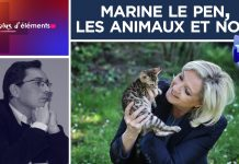 Le Plus d'Éléments #18 : Marine Le Pen, les animaux et nous