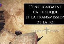 Terres de Mission n°211 : L'enseignement catholique et la transmission de la foi