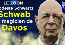 Zoom - Modeste Schwartz : Schwab, le magicien de Davos